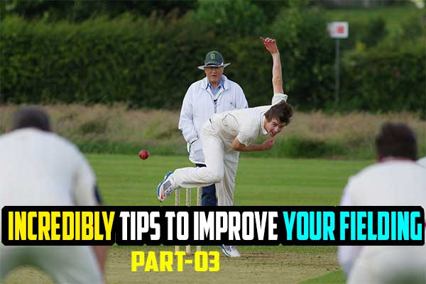 10 Incredibly Simple Tips To Improve Your Fielding (Beginner guideline series)