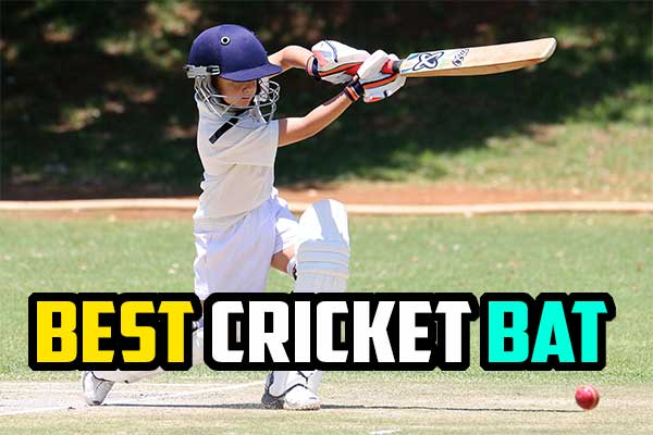 Best Cricket Bat Producers In The World