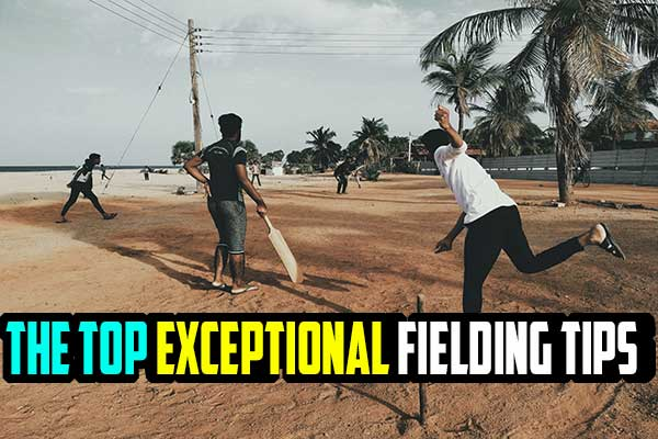 The Top 5 Exceptional Fielding Tips In Cricket To Enhance Your Game